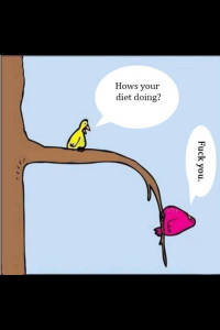 I'm the pink bird...