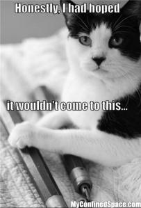 what would happen if my cat didn't get his share of tuna...
