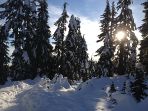 while snowshoeing, gorgeous!