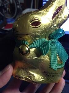 awwww, such a cute little bunny rabbit