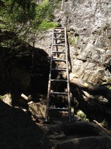 Ladder number one
