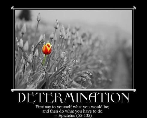 Determination-1