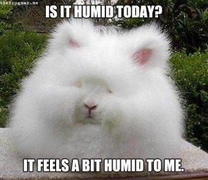 humidity