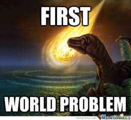 first-world-problem_o_120117