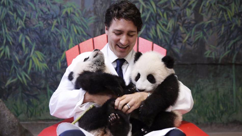 Trudeau and pandas