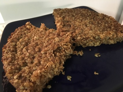 oatmeal squares 4