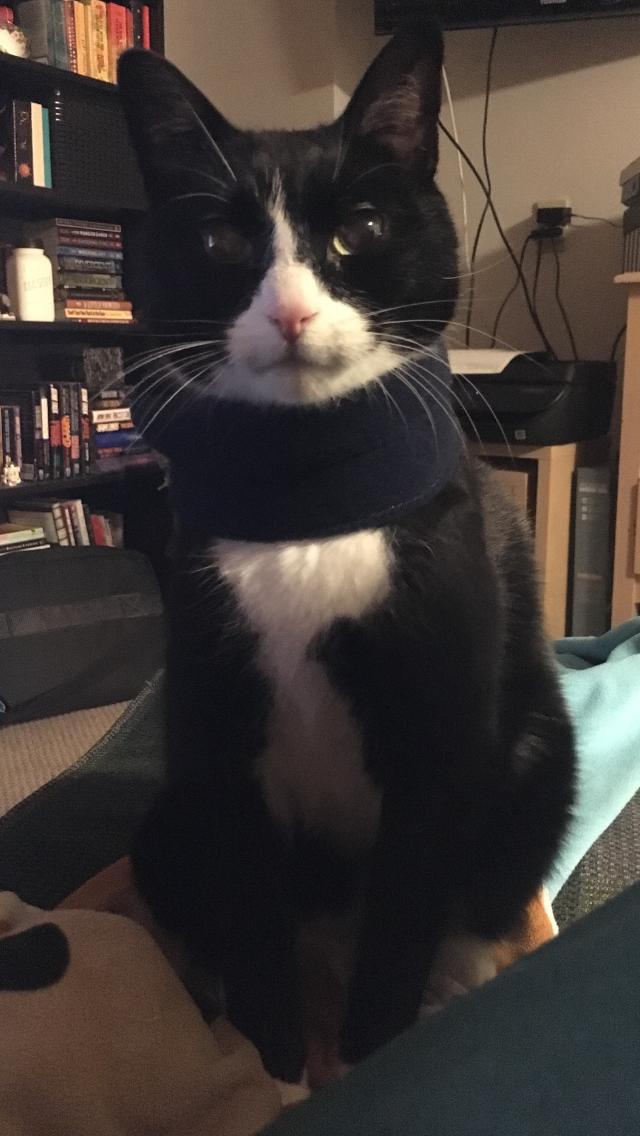 striker in a scarf